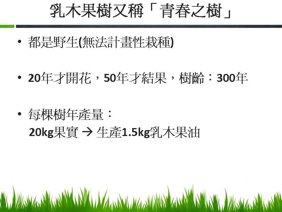 乳木果油-4