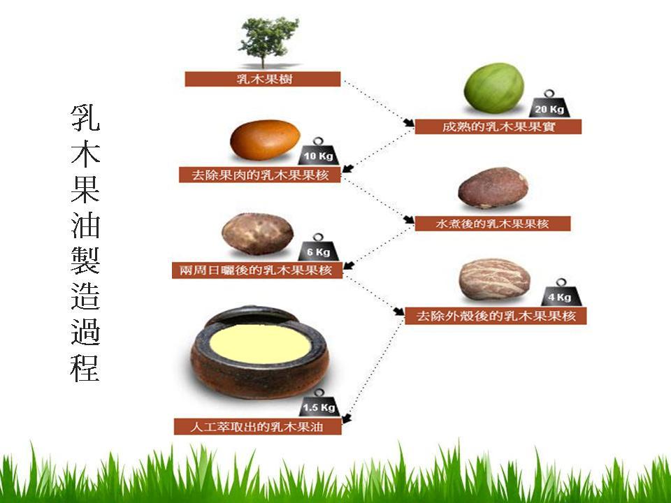 乳木果油-5